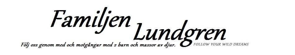 Fam Lundgren